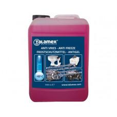 Antivries voor motor en drinkwater 5 liter tot -25 graden Celsius